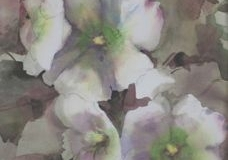 HOLLYHOCKS #1 - 29 X 22 - WATERCOLOR - $400