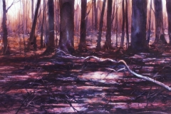 GROVE CITY SWAMP - 22 X 29 - WATERCOLOR - $450