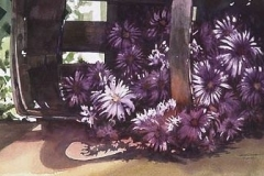 ASTERS - 22 X 29 - WATERCOLOR - $300